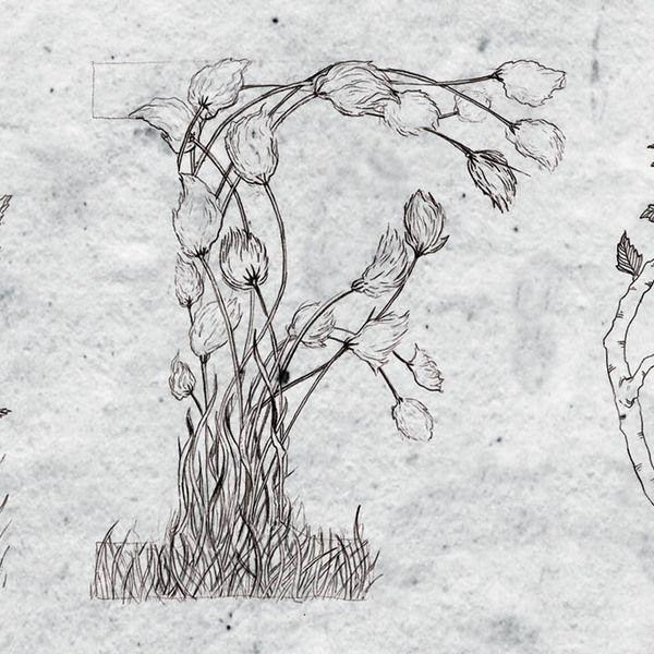 Holt wip by Stella Björg , via Behance