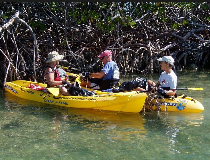 Adventure tours kayak Cartagena Colombia, tourism business development key player network, VIP service, events, http://yook3.com