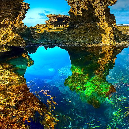 Back Beach, Sorrento  Mornington Peninsula, Victoria, Australia