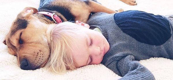 Beau este băiețelul de 2 ani din fotografii, care îl are drept cel mai bun prieten pe Theo, un cățel loial ce nu-l lasă singur nici măcar at...