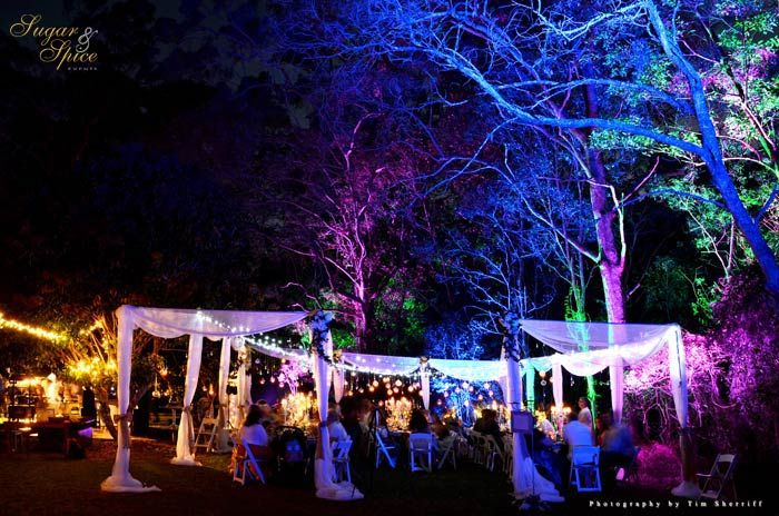 25 Best Ideas About Outdoor Evening Weddings On Pinterest: Best 25+ Night Wedding Lighting Ideas On Pinterest