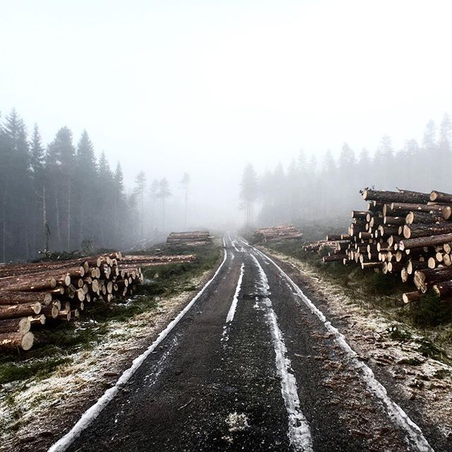 Went to visit our beautiful neighbor Sweden this weekend…just stunning. Discover a world of Nordic Makers at eniito.com