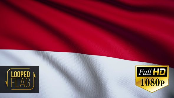 Indonesia Flag by bourjart National Flag of Indonesia Realistic looping animation with Highly Detailed fabricQuicktime MOV1920x1080Photo JPEG29.9710 secondsIf you like this item please rate. Thank you for purchasing!