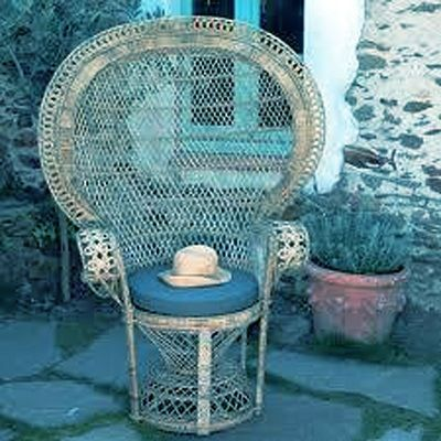 105 Best Peacock Chair Images On Pinterest Peacock Chair