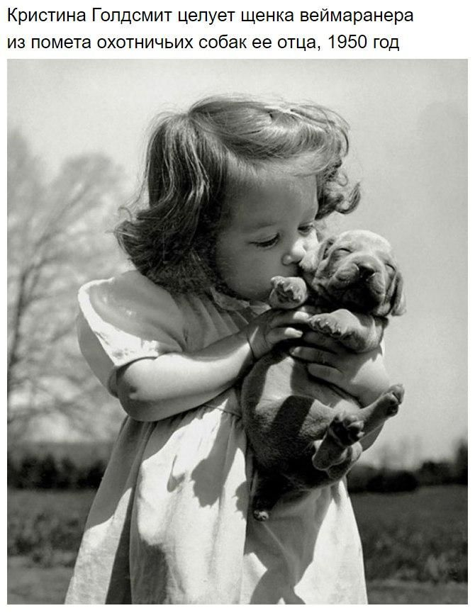 Эти исторические фотографии согреют даже самые ледяные сердца | Приколисты в картинках