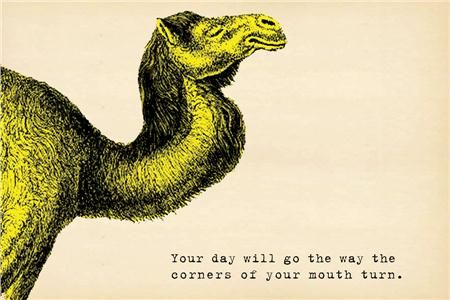 "Send a fun message to your friends with the ""Your day will go the way the corners of your mouth turn"" postcard from Sugarboo Designs. With a fun camel graphic."