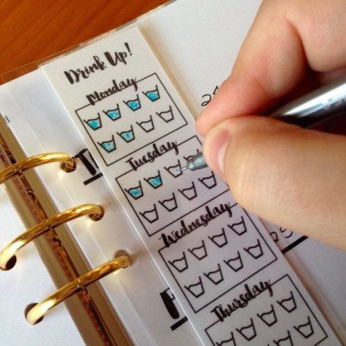 Bullet Journal Inspo, Bullet Journal Ideas Pages, Journal Pages, Bullet Journal Water Tracker, Water Journal, Bullet Journal 3 Ring Binder, Bullet Journal Table Of Contents, Bullet Journal How To Start A Layout, Bullet Journal Tracking