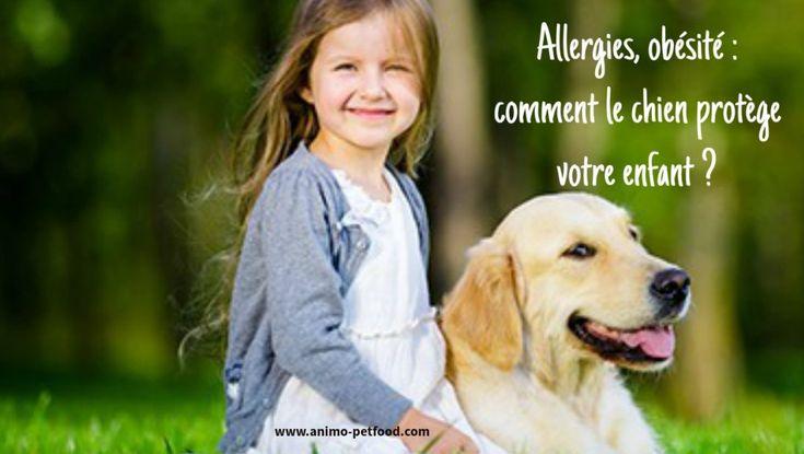 Allergies, obésité : comment le chien protège votre enfant ?