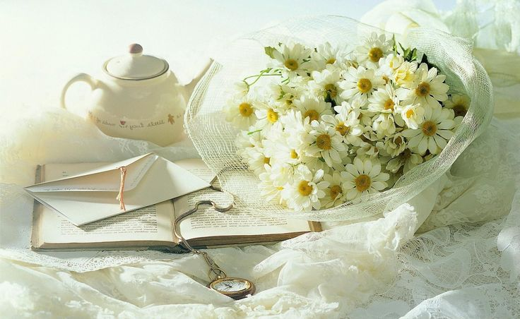 Beautiful HD Flower Wallpapers Webprecis
