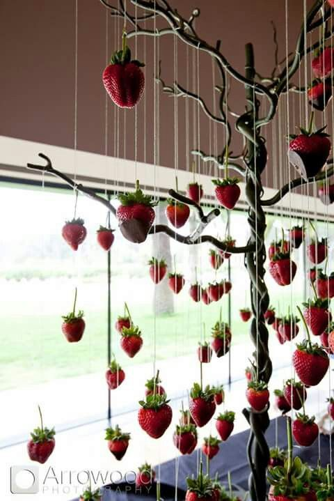 Put to other Purpose. This beautiful little tree that is holding up strawberries