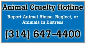 Report Animal Abuse, Neglect or Animals in Distress