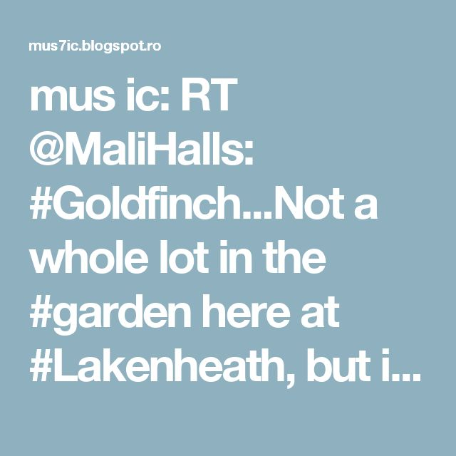 mus ic: RT @MaliHalls: #Goldfinch...Not a whole lot in the #garden here at #Lakenheath, but it was #great to #hear a #Song #Thrush… https://t.co/Qcl2CwzYxl