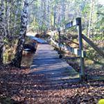 Liten bru over kanalen mellom Stålsætertjernet og Mosjøen / Small wooden bridge across a narrow canal
