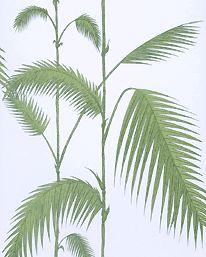Palm Leaves Green/ Pale Blue från Cole & Son