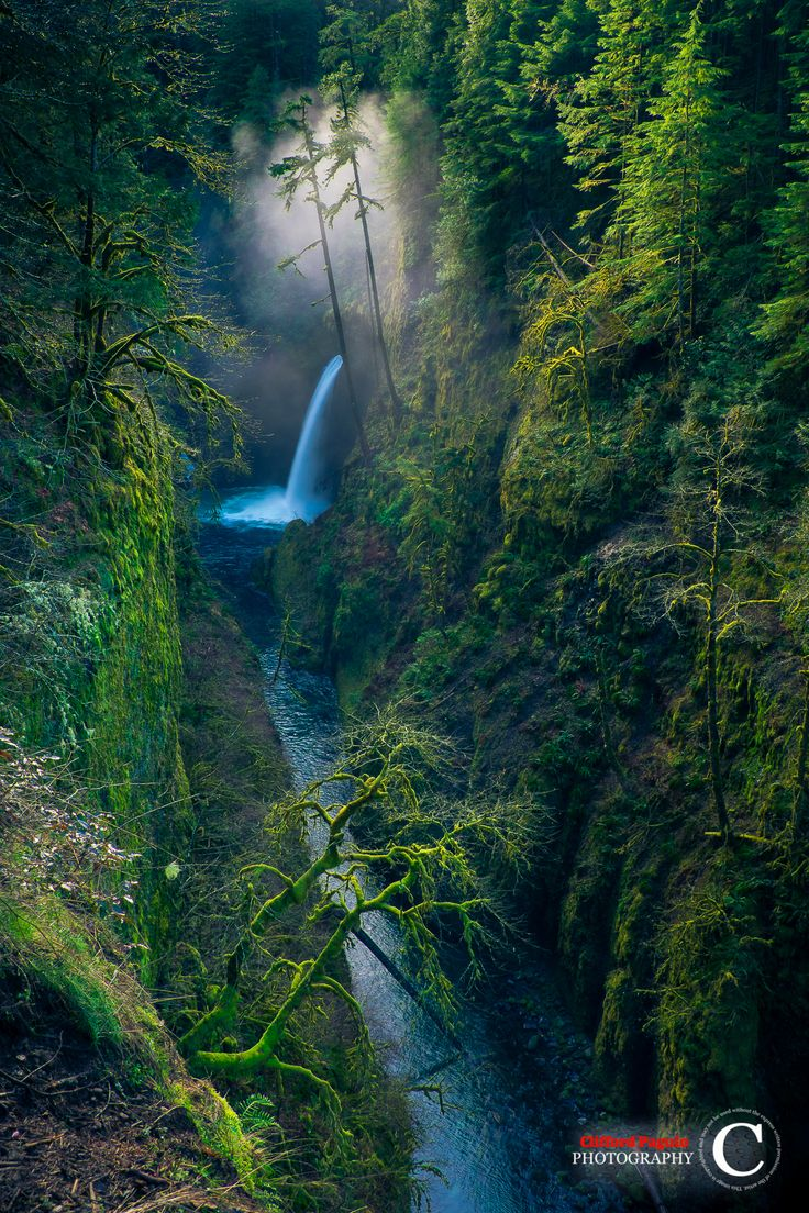 10 Majestic Waterfalls In Oregon You Need To Check Out This Year
