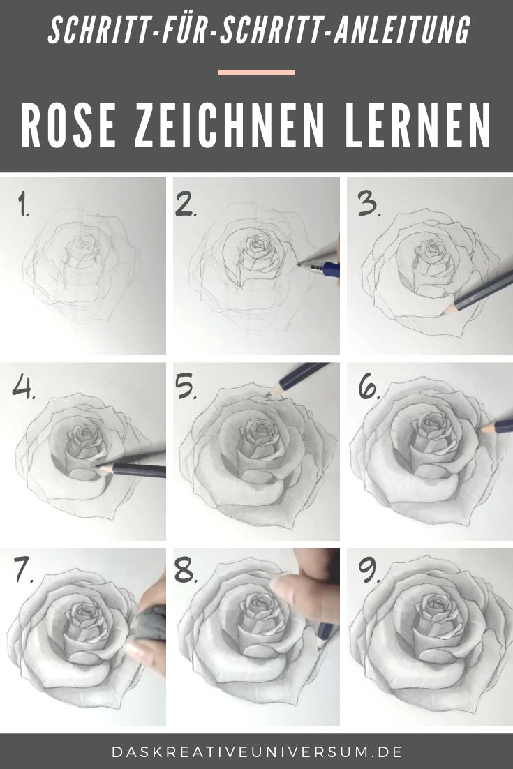Malen einfach rosen Rosen zeichnen