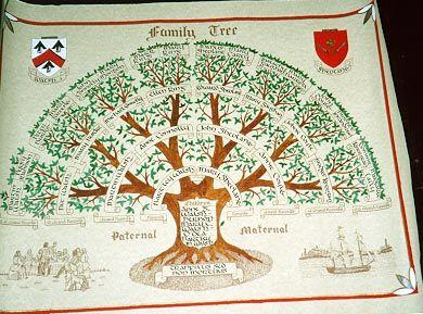 27 best Family Tree Designs images on Pinterest