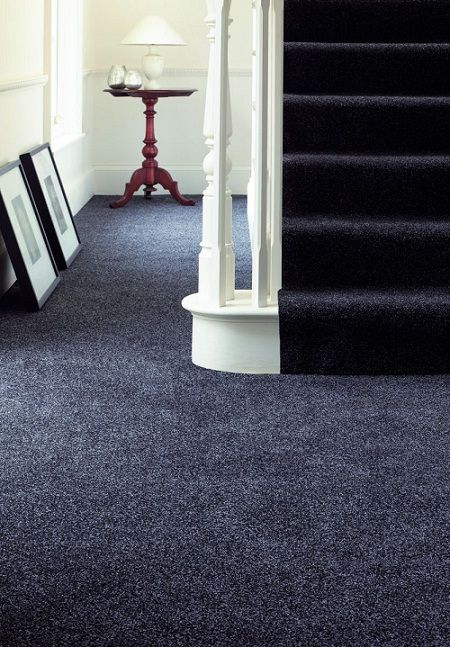 Nice deep pile dark blue / grey carpet...trying to keep it masculine