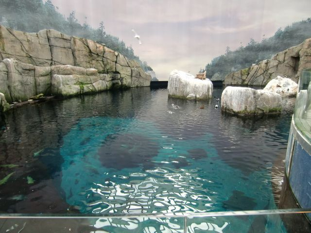 Our Favorite Things to Do in Montreal in the Summer: Visit Space for Life: Biodome, Botanical Gardens, Insectarium, and Planetarium