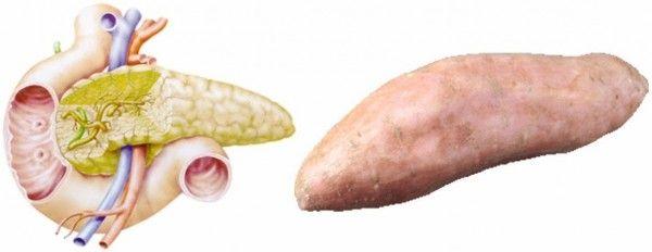 Batata para el pancreas