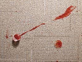 Clean Carpet Stains