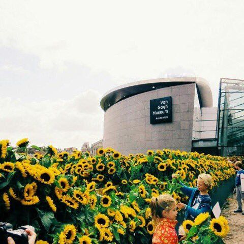 Vincent Van Gogh Museum in Amsterdam /// love the sunflowers