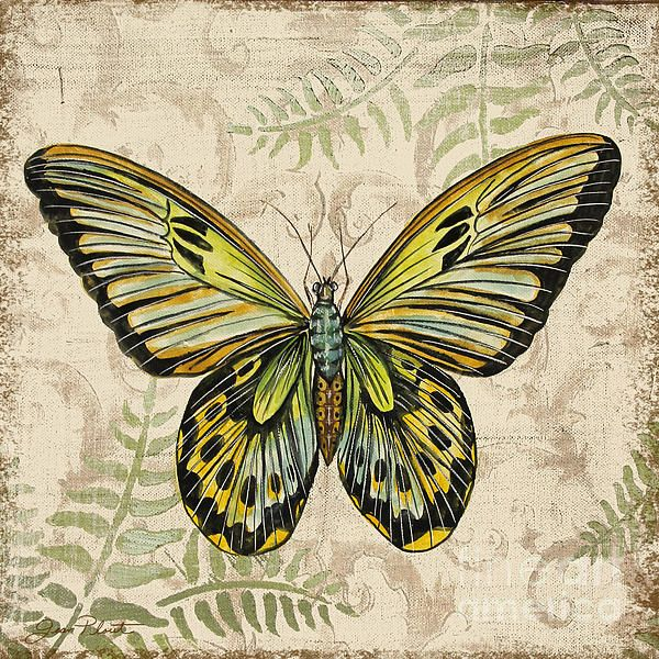 I uploaded new artwork to plout-gallery.artistwebsites.com! - 'Butterfly Daydreams-A' - http://plout-gallery.artistwebsites.com/featured/butterfly-daydreams-a-jean-plout.html via @fineartamerica
