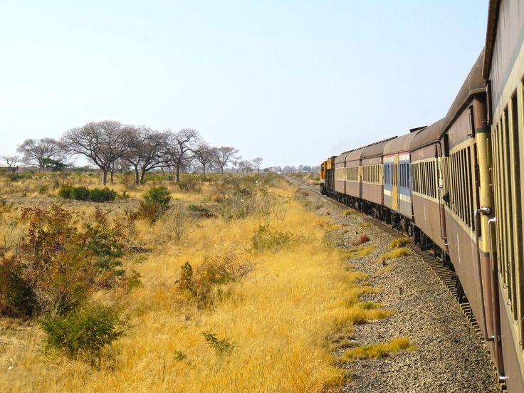 O nosso périplo pela África oriental começaria em Victoria Falls, e o nosso…