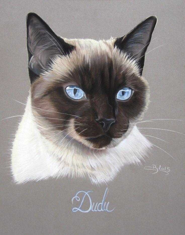 Oltre 25 fantastiche idee su disegno di gatto su pinterest for Siamese 9 electric motor