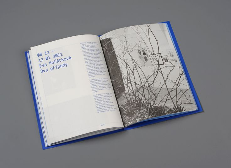 Blue Notebook    Young Gallery (TIC)  –  Exhibition catalog  72 pages, 165×225  –  2012
