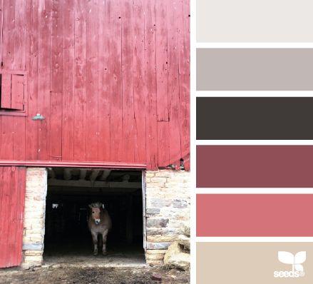 Arenas, grises y rosados