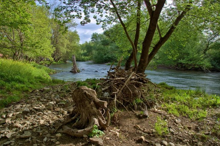 ladonas river - Google Search