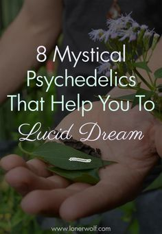 These amazing legal psychedelics help you to become lucid while dreaming!