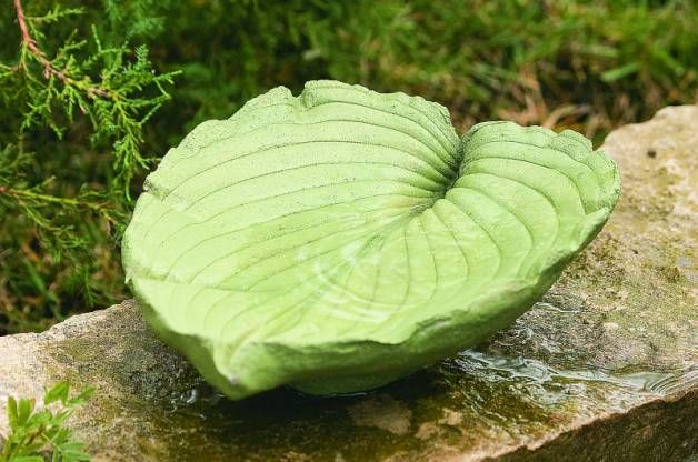 This DIY leaf bird bath project will create a one-of-kind watering place for the birds in your backyard, and working with cement is easier than you think!