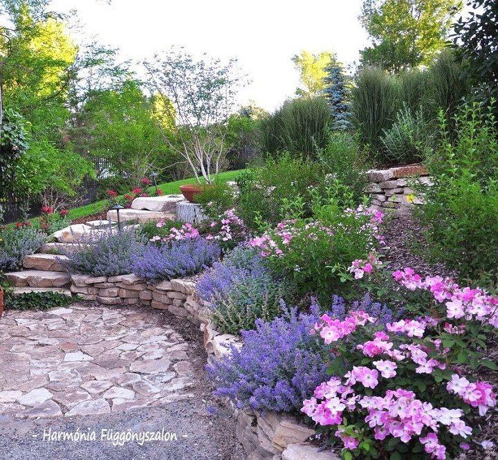 Fantasztikus kerti fotók - ötletek - Bekezdés