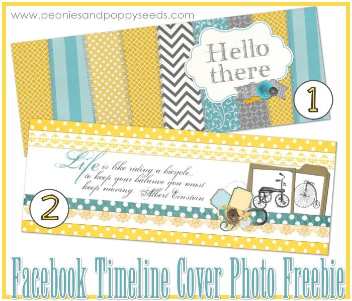 FREE Timeline Covers: Photo Ideas, Photo De, Poppyseed, Photo Freebies, Cover Photos, Covers Photos, Photos De