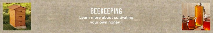 Beekeeping Supplies, Bee Hives & Bee Supplies | Williams-Sonoma