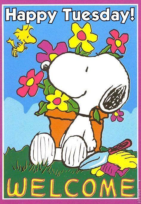 Happy Tuesday Snoopy