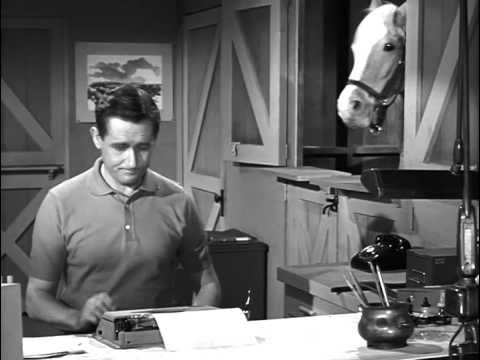 Mister Ed S2 | Clint Eastwood Meets Mister Ed - YouTube