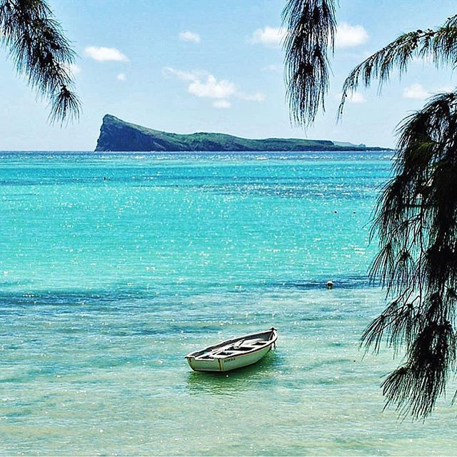 1511 Best Images About Mauritius At A Glance On Pinterest