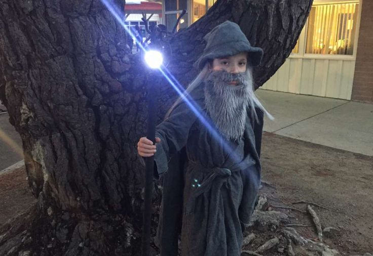 """GANDALF THE GREY: I used a glue gun to make the robe and cape - not a single stitch - and the wizard hat was built on top of an old Gilligan hat my wife hated. The staff is PVC pipe, wire coated in rubber, IKEA night lights and the whole thing wrapped in athletic tape. Lens flare by J.J. Abrams. He loves the costume, but is very tired of me demanding that he yell """"You Shall Not Pass!"""
