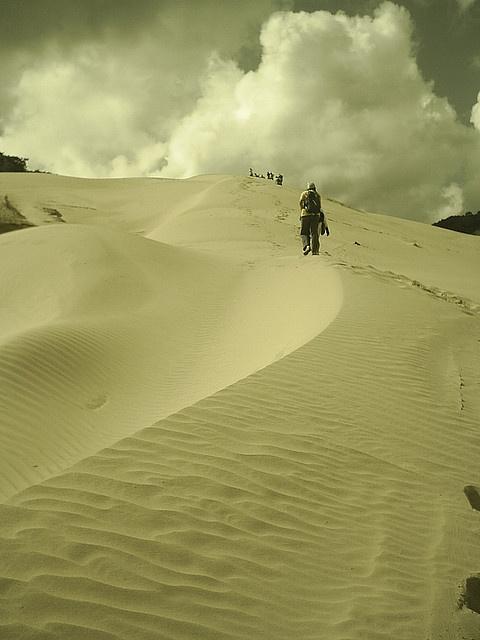 Desierto de la Uribia - Guajira , Colombia.