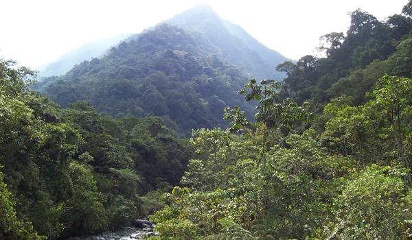 Rio Pance Santiago de Cali  - Colombia
