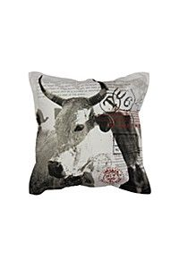 NGUNI WITH SCRIPT 55X55CM SCATTER CUSHION