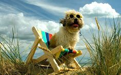 Dog-friendly hotels and accommodation in Britain - Telegraph
