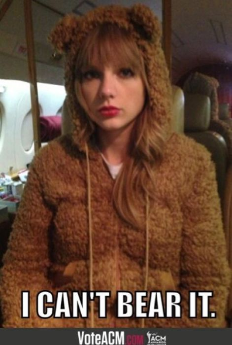 See Taylor Swift's epic, long Instagram comment to a bullied fan.