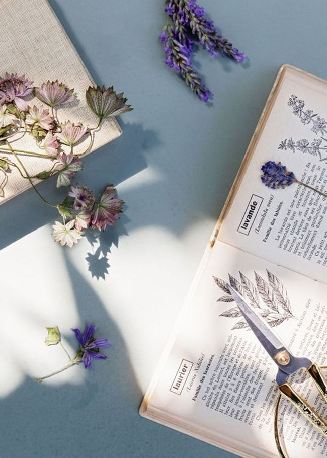 Vous souhaitez décorer durablement votre intérieur? Optez pour des fleurs séchées. Elles apporteront au même titre que les fleurs coupées de la couleur et de la vie dans votre maison.
