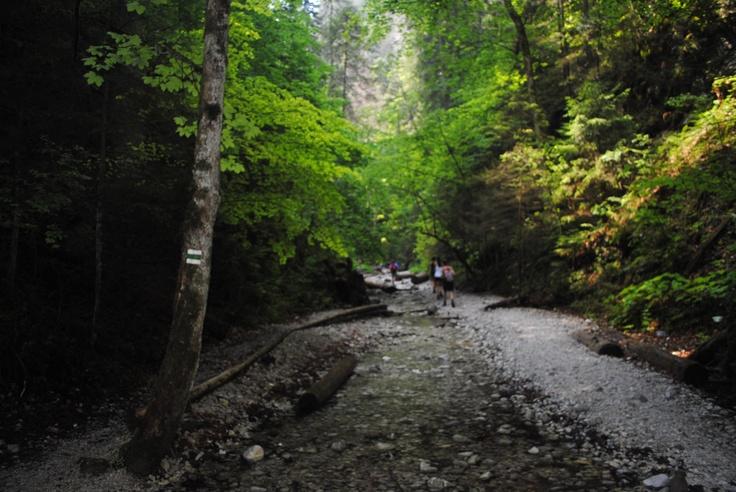 Suchá Belá, Slovak Paradise