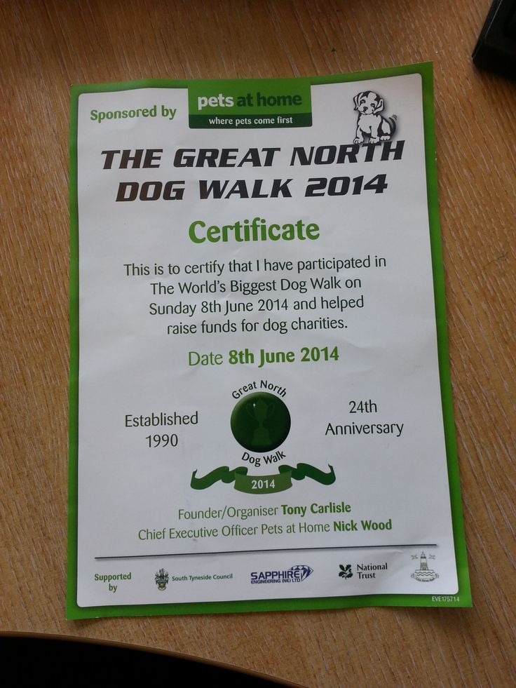 We got ours! Did you get your certificate and goody bag for completing the Great North Dog Walk 2014!