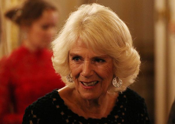 Camilla Parker Bowles Photos - Camilla, Duchess of Cornwall attends the Bruce Oldfield Fashion Show at Lancaster House in support of the National Osteoporosis Society on November 15, 2017 in London, United Kingdom. - The Duchess of Cornwall Attends the Bruce Oldfield Fashion Show in Aid of the National Osteoporosis Society